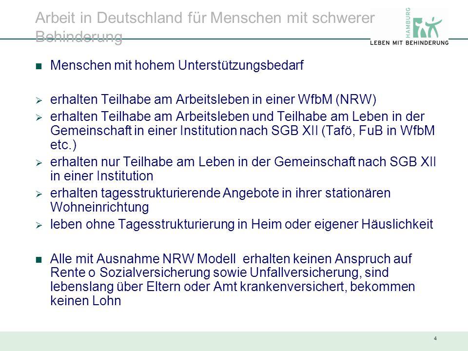 4 Arbeit in Deutschland für Menschen mit schwerer Behinderung Menschen mit hohem Unterstützungsbedarf  erhalten Teilhabe am Arbeitsleben in einer Wfb
