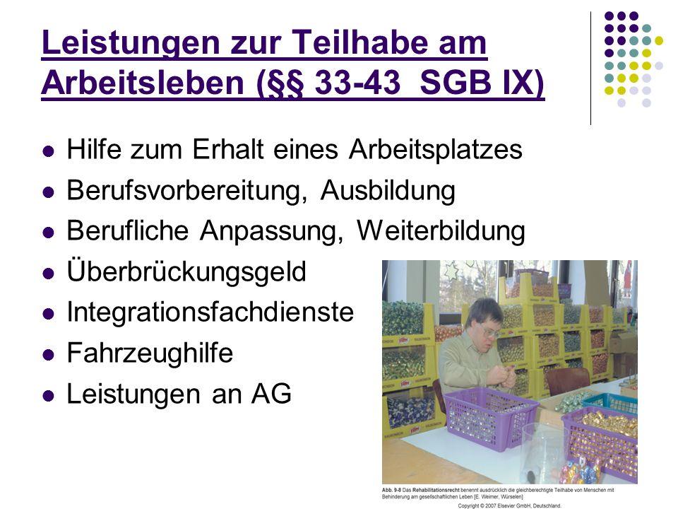 24 Leistungen zur Teilhabe am Arbeitsleben (§§ 33-43 SGB IX) Hilfe zum Erhalt eines Arbeitsplatzes Berufsvorbereitung, Ausbildung Berufliche Anpassung