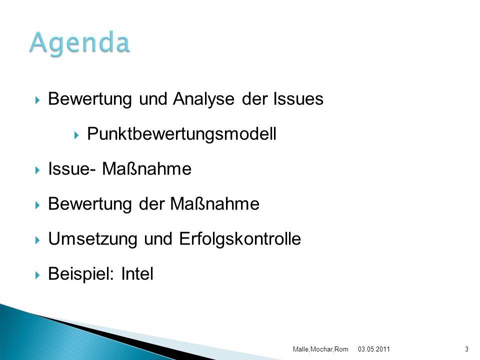  Bewertung und Analyse der Issues  Punktbewertungsmodell  Issue- Maßnahme  Bewertung der Maßnahme  Umsetzung und Erfolgskontrolle  Beispiel: Int