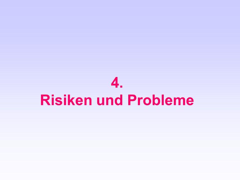 4. Risiken und Probleme