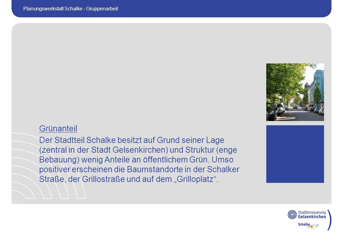Grünanteil Der Stadtteil Schalke besitzt auf Grund seiner Lage (zentral in der Stadt Gelsenkirchen) und Struktur (enge Bebauung) wenig Anteile an öffentlichem Grün.
