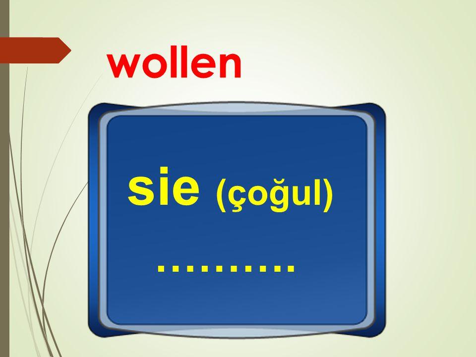 wollen sie (çoğul) ……….