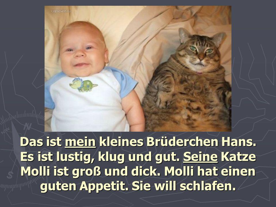 Das ist mein kleines Brüderchen Hans. Es ist lustig, klug und gut. Seine Katze Molli ist groß und dick. Molli hat einen guten Appetit. Sie will schlaf