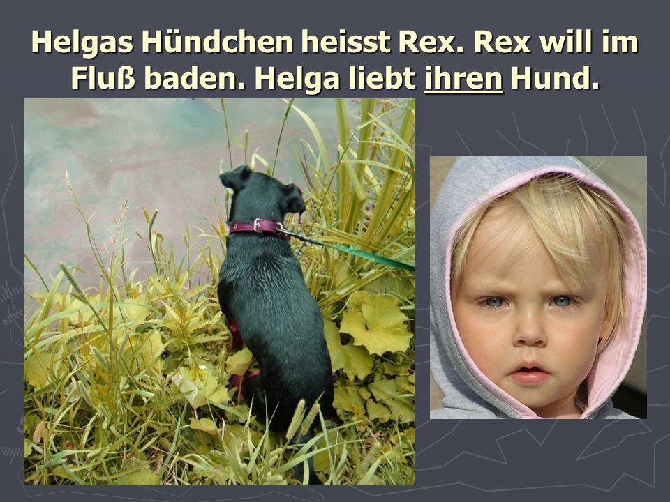 Helgas Hündchen heisst Rex. Rex will im Fluß baden. Helga liebt ihren Hund.