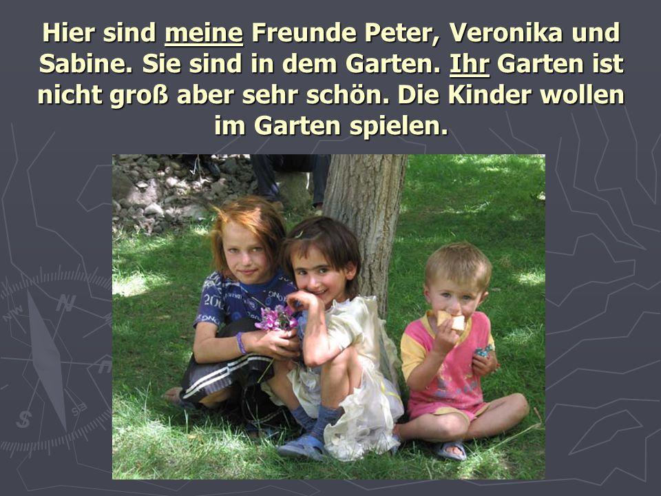 Hier sind meine Freunde Peter, Veronika und Sabine. Sie sind in dem Garten. Ihr Garten ist nicht groß aber sehr schön. Die Kinder wollen im Garten spi