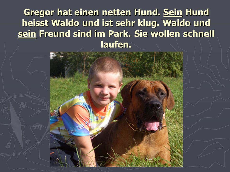 Gregor hat einen netten Hund. Sein Hund heisst Waldo und ist sehr klug. Waldo und sein Freund sind im Park. Sie wollen schnell laufen.