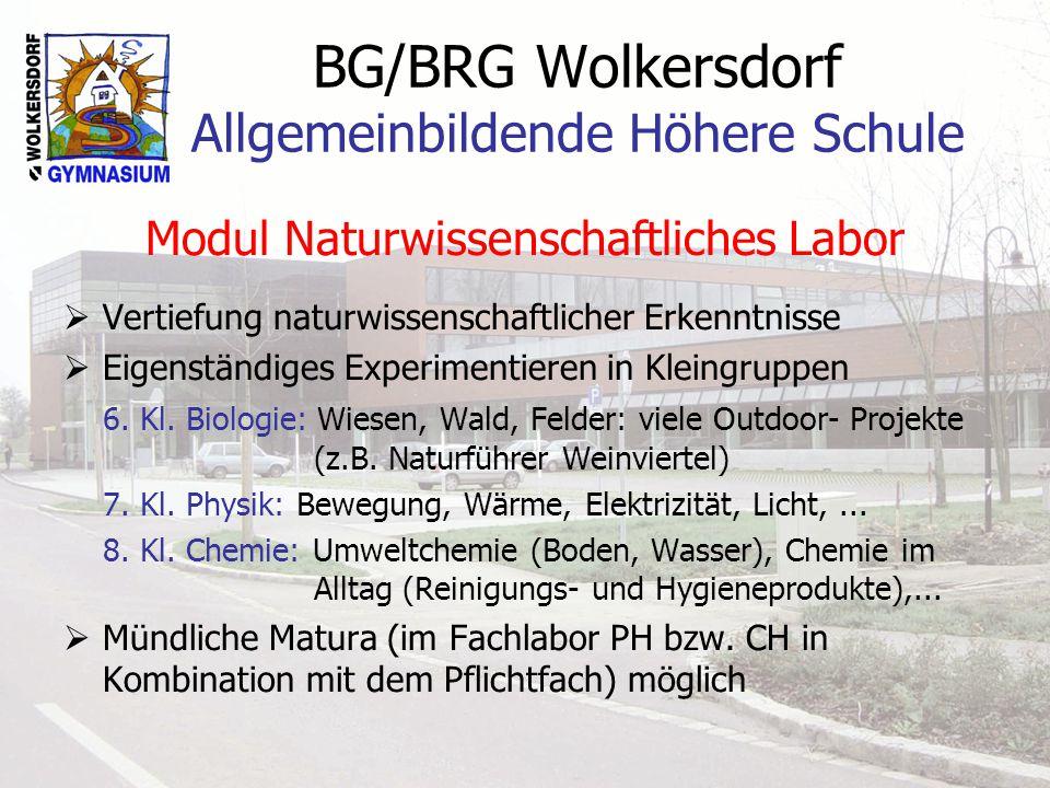 BG/BRG Wolkersdorf Allgemeinbildende Höhere Schule Modul Naturwissenschaftliches Labor  Vertiefung naturwissenschaftlicher Erkenntnisse  Eigenständi