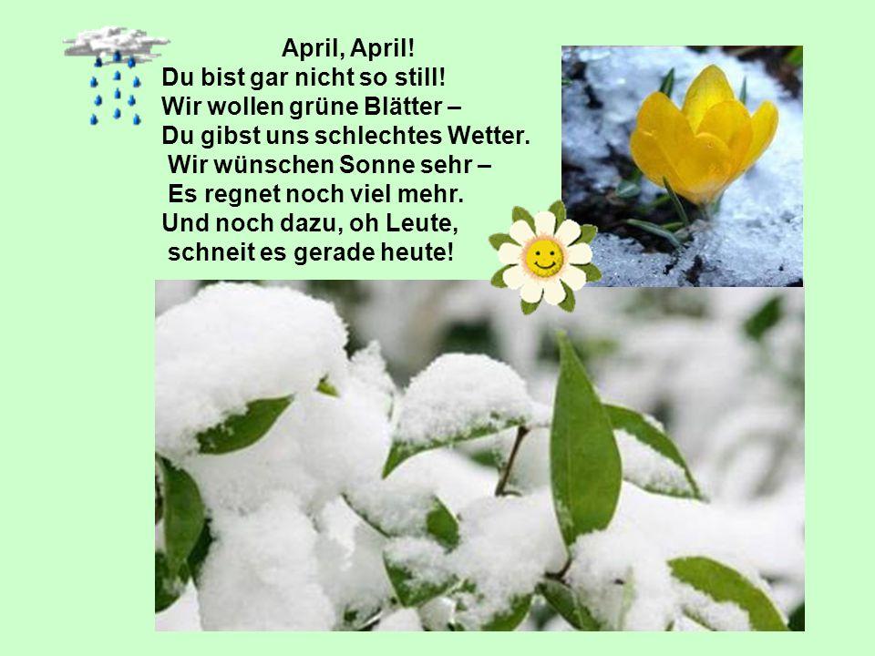 April, April! Du bist gar nicht so still! Wir wollen grüne Blätter – Du gibst uns schlechtes Wetter. Wir wünschen Sonne sehr – Es regnet noch viel meh