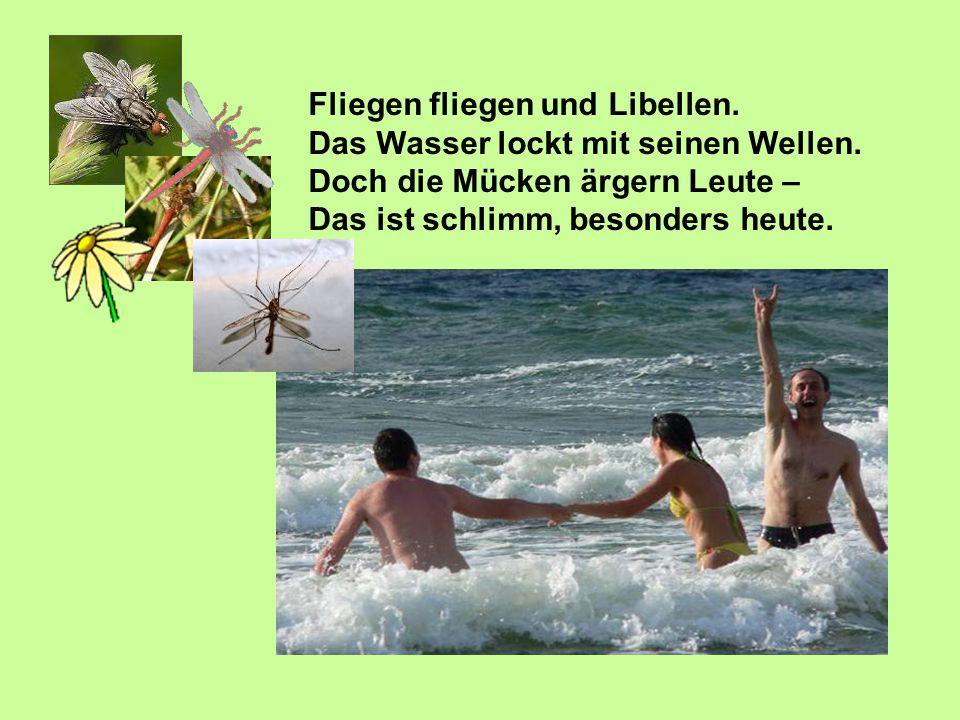 Fliegen fliegen und Libellen. Das Wasser lockt mit seinen Wellen. Doch die Mücken ärgern Leute – Das ist schlimm, besonders heute.