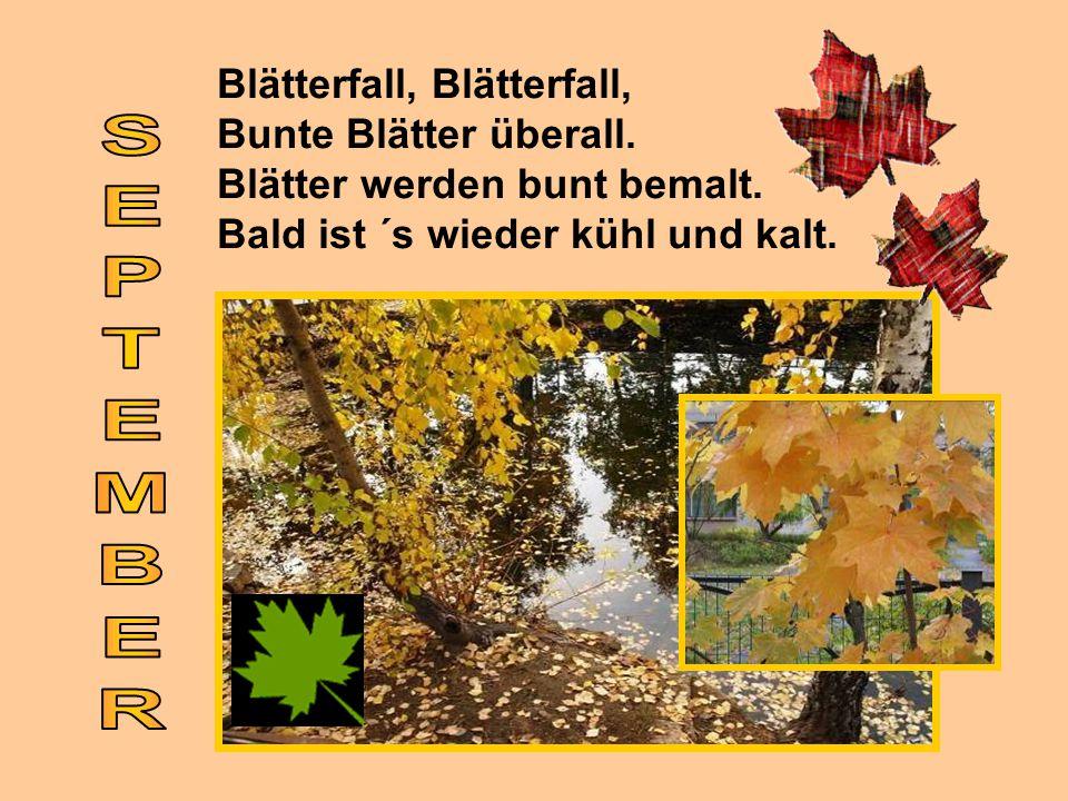Blätterfall, Blätterfall, Bunte Blätter überall. Blätter werden bunt bemalt. Bald ist ´s wieder kühl und kalt.