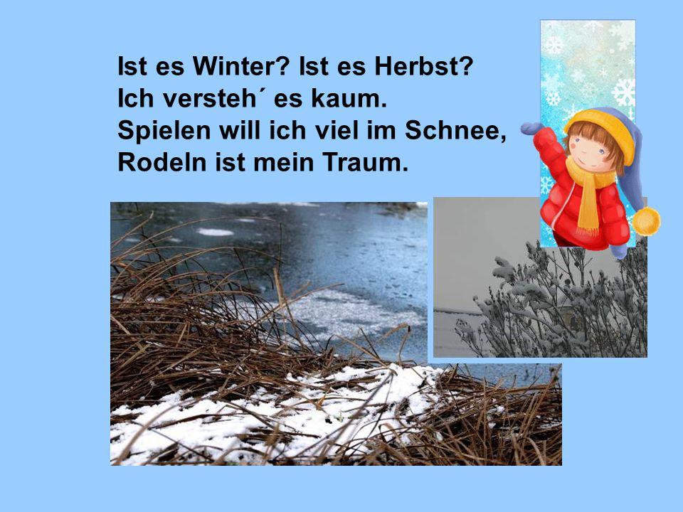 Ist es Winter? Ist es Herbst? Ich versteh´ es kaum. Spielen will ich viel im Schnee, Rodeln ist mein Traum.