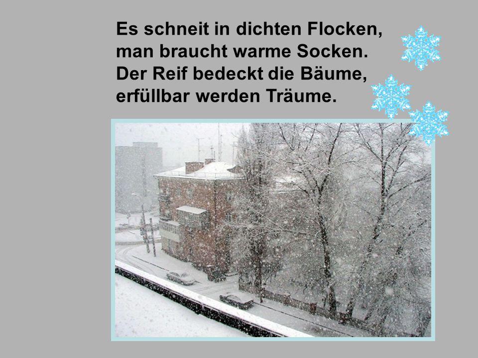 Es schneit in dichten Flocken, man braucht warme Socken. Der Reif bedeckt die Bäume, erfüllbar werden Träume.