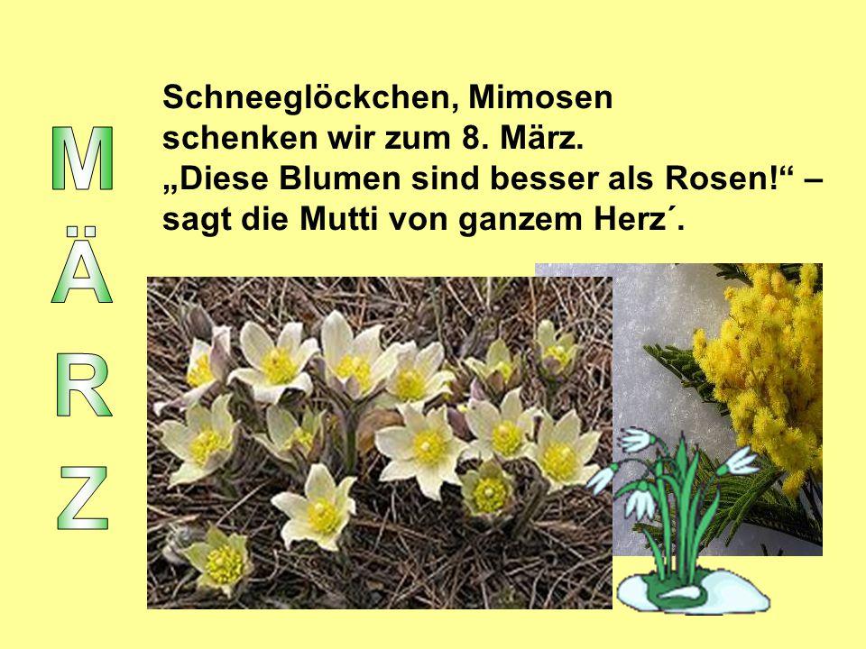 """Schneeglöckchen, Mimosen schenken wir zum 8. März. """"Diese Blumen sind besser als Rosen!"""" – sagt die Mutti von ganzem Herz´."""