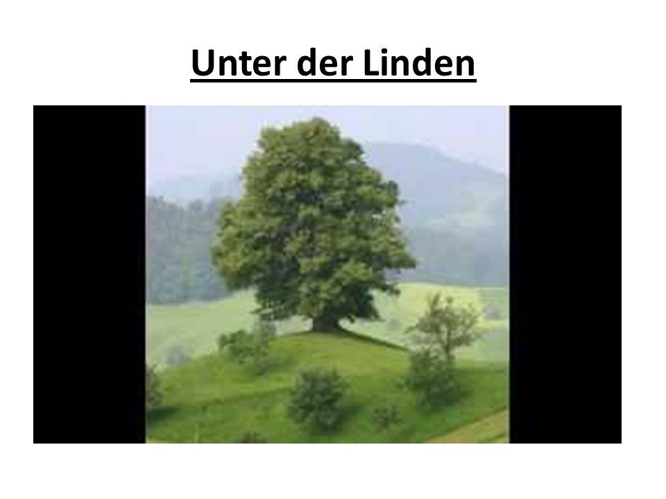 Unter der Linden