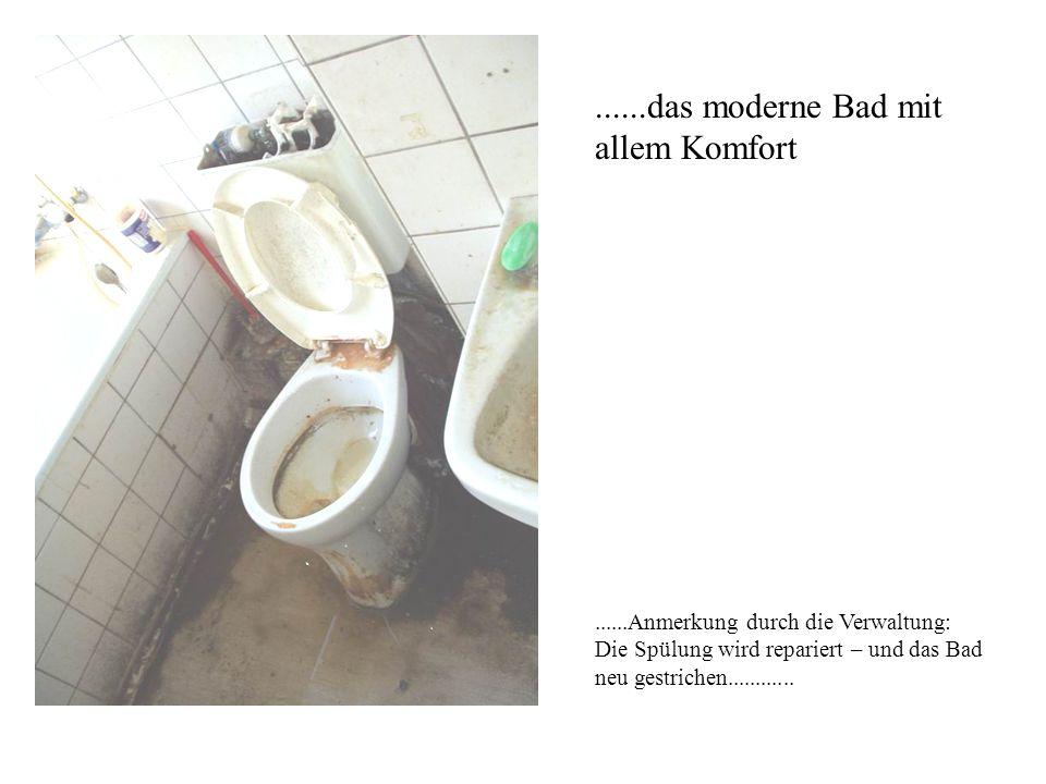 ......das moderne Bad mit allem Komfort......Anmerkung durch die Verwaltung: Die Spülung wird repariert – und das Bad neu gestrichen............