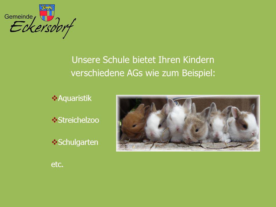 Unsere Schule bietet Ihren Kindern verschiedene AGs wie zum Beispiel:  Aquaristik  Streichelzoo  Schulgarten etc.