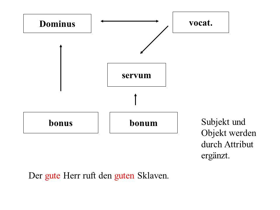 Dominus vocat. servum bonus Der gute Herr ruft den guten Sklaven. bonum Subjekt und Objekt werden durch Attribut ergänzt.