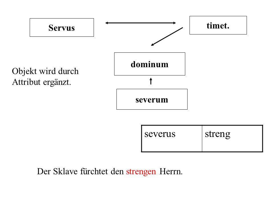Servus timet. dominum severum severusstreng Der Sklave fürchtet den strengen Herrn. Objekt wird durch Attribut ergänzt.