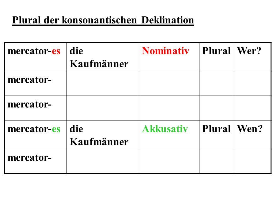 mercator-esdie Kaufmänner NominativPluralWer? mercator- mercator-esdie Kaufmänner AkkusativPluralWen? mercator- Plural der konsonantischen Deklination