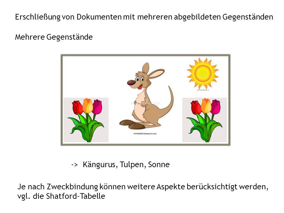 Erschließung von Dokumenten mit mehreren abgebildeten Gegenständen -> Kängurus, Tulpen, Sonne Mehrere Gegenstände Je nach Zweckbindung können weitere Aspekte berücksichtigt werden, vgl.