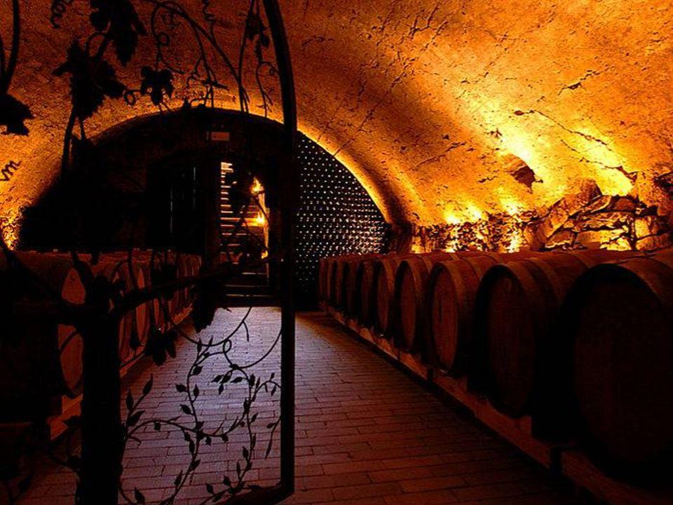 Absoluter Höhepunkt in Langenlois ist die LOISIUM- Weinerlebniswelt mit ihren bis zu 900 Jahre alten 1,5 km langen Kellerlabyrinth.