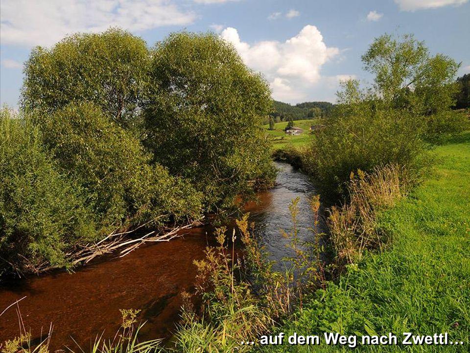 … und vorbei an Schloss Rappottenstein… … und vorbei an Schloss Rappottenstein…