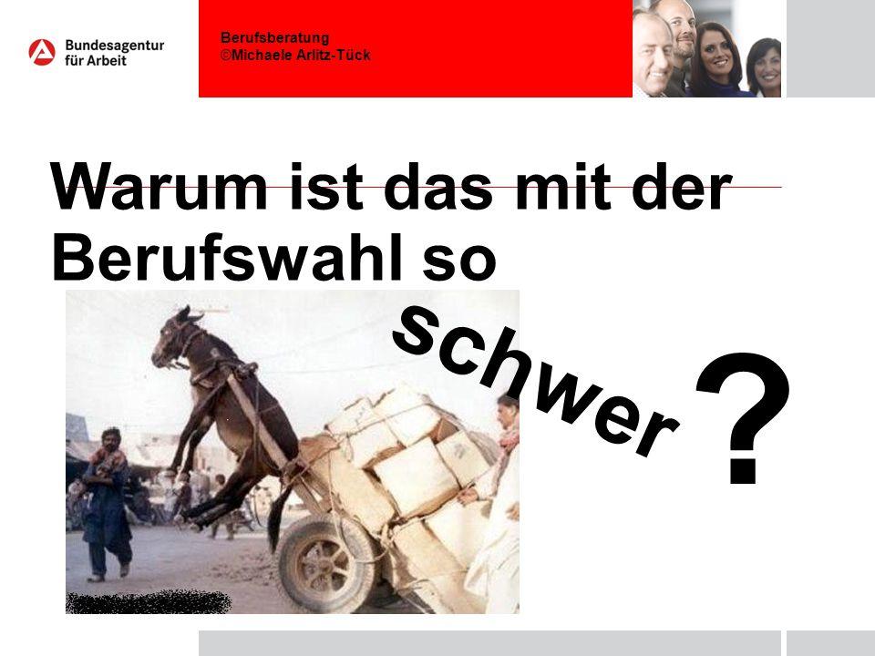 Berufsberatung ©Michaele Arlitz-Tück Warum ist das mit der Berufswahl so schwer ?