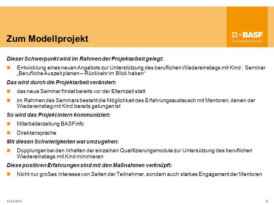 14.01.20115 Zum Modellprojekt Dieser Schwerpunkt wird im Rahmen der Projektarbeit gelegt: Entwicklung eines neuen Angebots zur Unterstützung des beruf