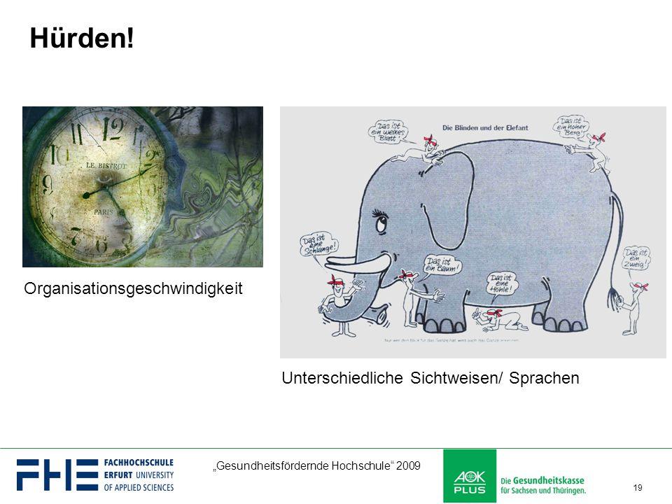 """""""Gesundheitsfördernde Hochschule"""" 2009 19 Hürden! Organisationsgeschwindigkeit Unterschiedliche Sichtweisen/ Sprachen"""