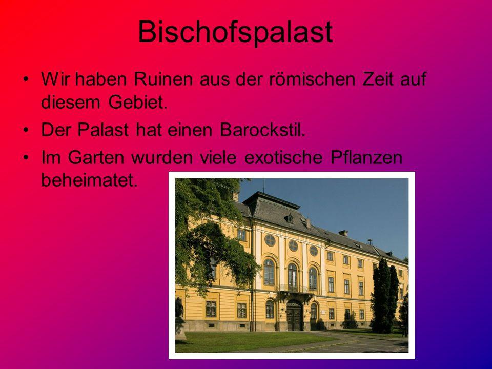 Bischofspalast Wir haben Ruinen aus der römischen Zeit auf diesem Gebiet. Der Palast hat einen Barockstil. Im Garten wurden viele exotische Pflanzen b
