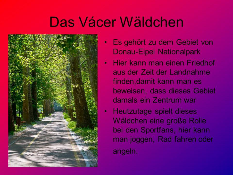 Das Vácer Wäldchen Es gehört zu dem Gebiet von Donau-Eipel Nationalpark Hier kann man einen Friedhof aus der Zeit der Landnahme finden,damit kann man es beweisen, dass dieses Gebiet damals ein Zentrum war Heutzutage spielt dieses Wäldchen eine große Rolle bei den Sportfans, hier kann man joggen, Rad fahren oder angeln.