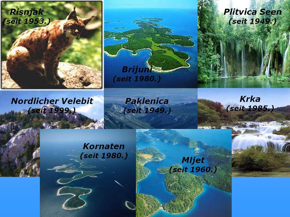 Nationalparks Risnjak (seit 1953.) Brijuni (seit 1980.) Plitvica Seen (seit 1949.) Nordlicher Velebit (seit 1999.) Paklenica (seit 1949.) Krka (seit 1