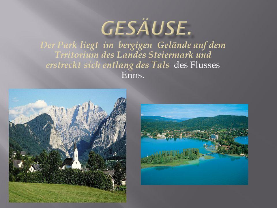 Der Park liegt im bergigen Gelände auf dem Trritorium des Landes Steiermark und erstreckt sich entlang des Tals des Flusses Enns.