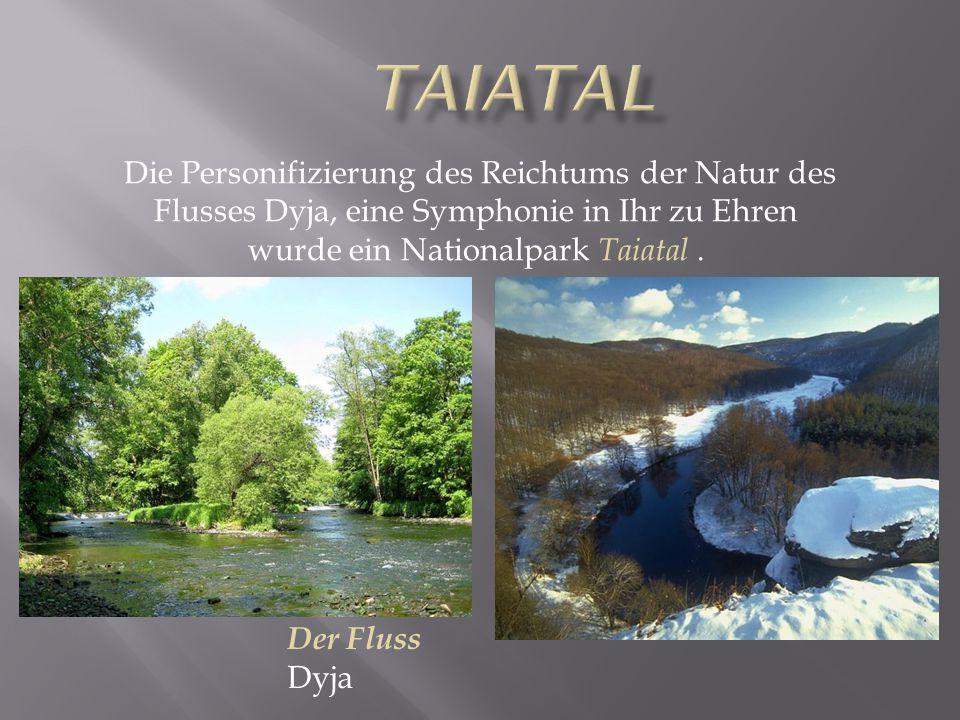 Die Personifizierung des Reichtums der Natur des Flusses Dyja, eine Symphonie in Ihr zu Ehren wurde ein Nationalpark Taiatal. Der Fluss Dyja