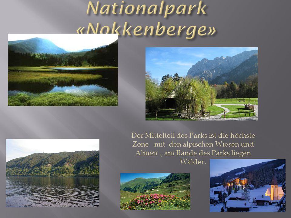 Der Mittelteil des Parks ist die höchste Zone mit den alpischen Wiesen und Almen, am Rande des Parks liegen Wälder.