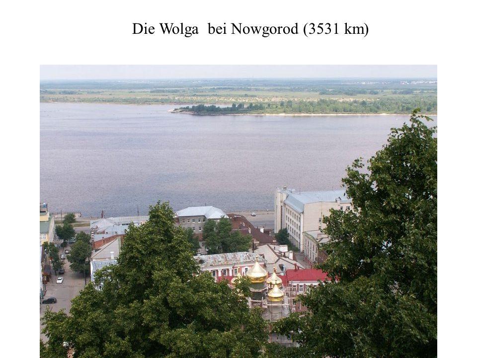 Die längsten Flüsse Europas (über 1.000 km) sind: Wolga(3.531 km) fließt ins Kaspische Meer (größter See der Erde) Donau (2.888 km) Länge mit Quellflu