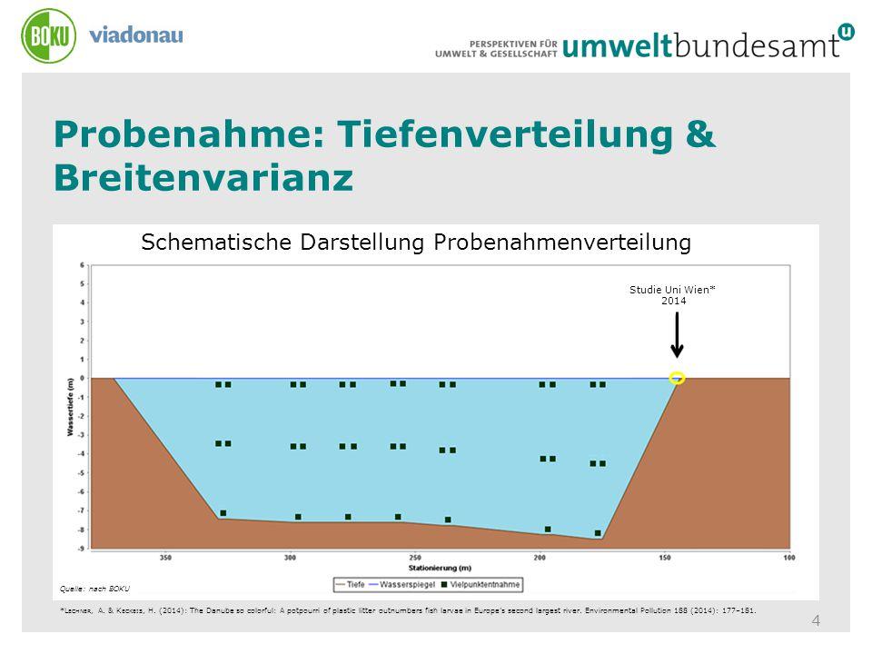 Schematische Darstellung Probenahmenverteilung Probenahme: Tiefenverteilung & Breitenvarianz 4 Quelle: nach BOKU Studie Uni Wien* 2014 *L ECHNER, A. &