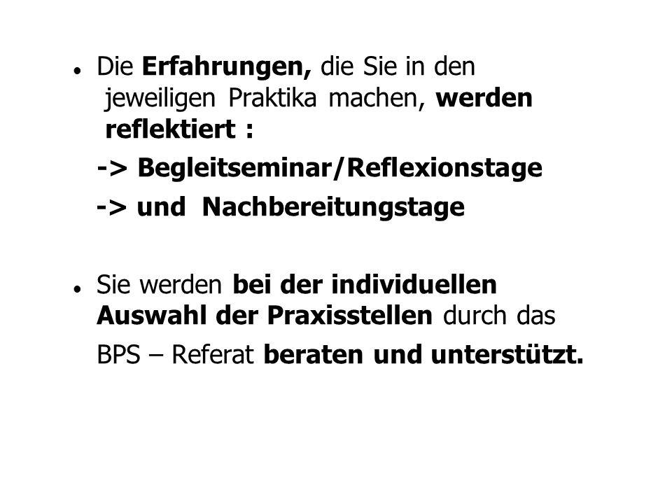 3.Begleitung (Reflexion) um die Erfahrungen, die bis dahin gemacht wurden zu reflektieren und ggf.