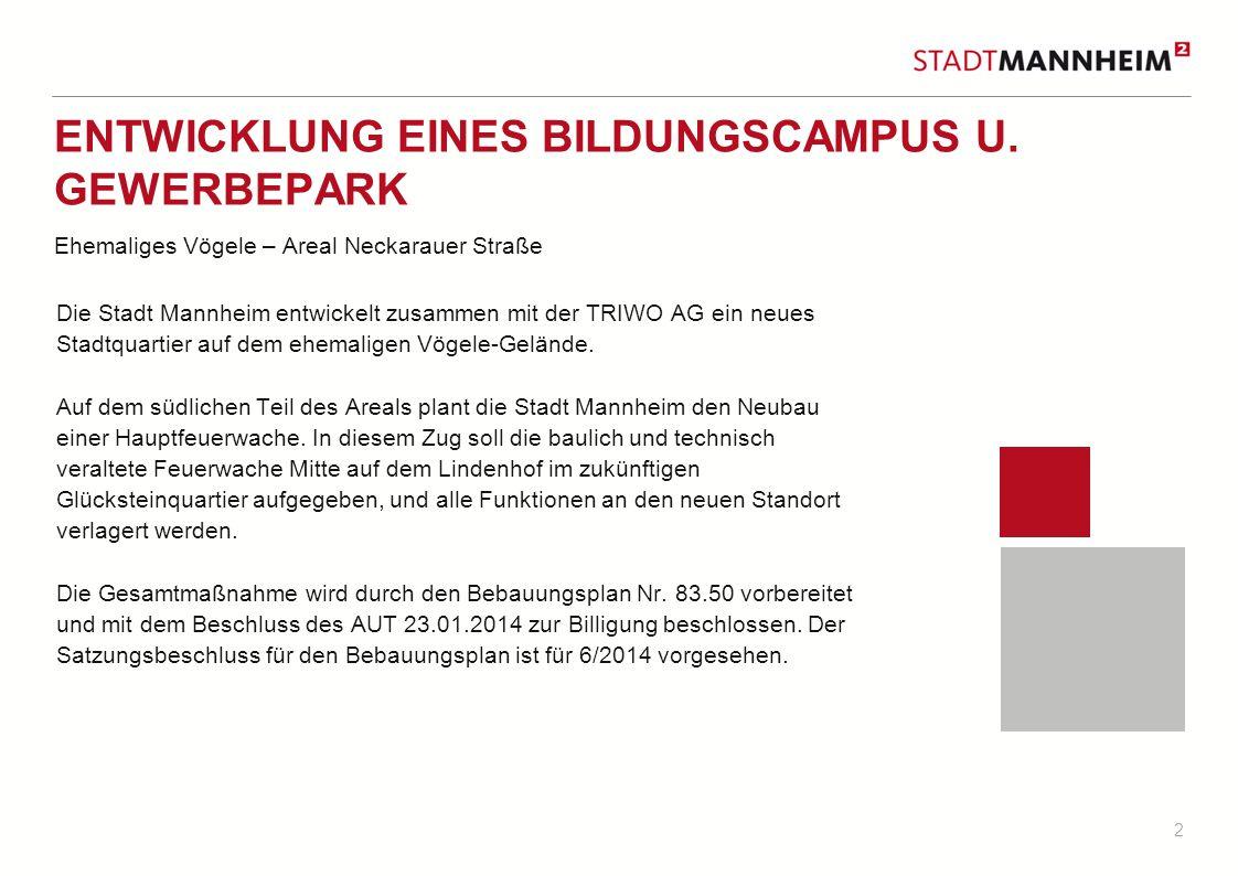 2 ENTWICKLUNG EINES BILDUNGSCAMPUS U. GEWERBEPARK Ehemaliges Vögele – Areal Neckarauer Straße Die Stadt Mannheim entwickelt zusammen mit der TRIWO AG