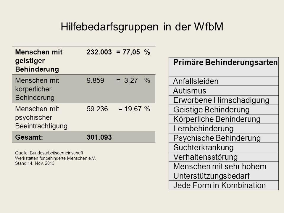 Hilfebedarfsgruppen in der WfbM Menschen mit geistiger Behinderung 232.003 = 77,05 % Menschen mit körperlicher Behinderung 9.859 = 3,27 % Menschen mit psychischer Beeinträchtigung 59.236 = 19,67 % Gesamt:301.093 Quelle: Bundesarbeitsgemeinschaft Werkstätten für behinderte Menschen e.V.