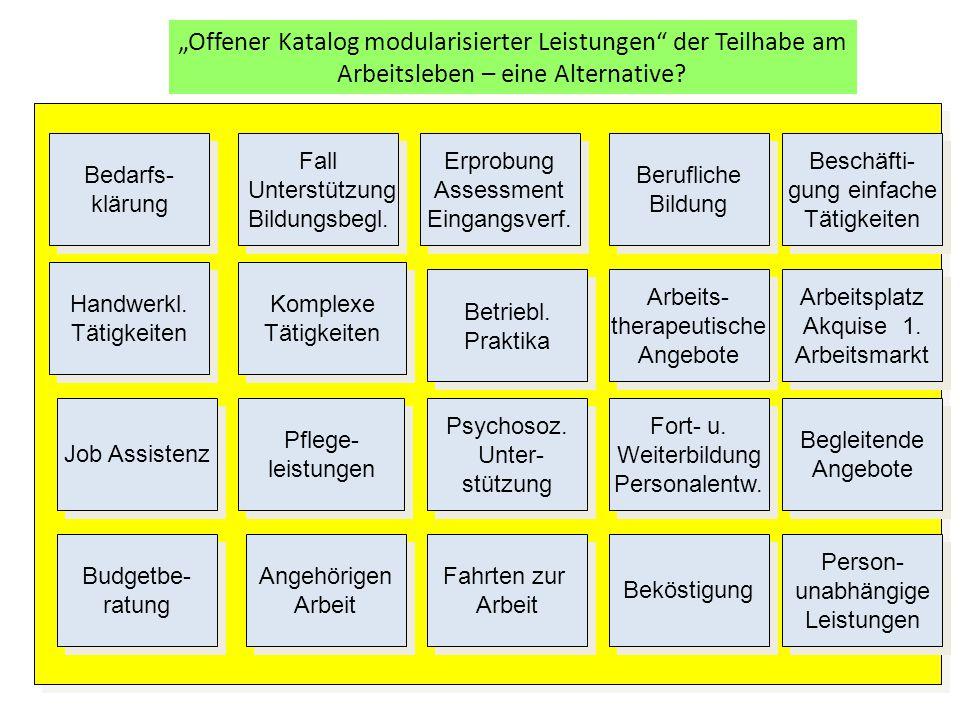"""""""Offener Katalog modularisierter Leistungen der Teilhabe am Arbeitsleben – eine Alternative."""
