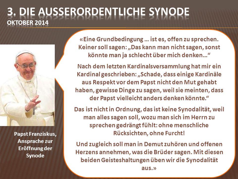 Der Abschluss der ersten Synode spielt den Ball des Nachdenkens und Suchens wieder in die Weltkirche zurück.