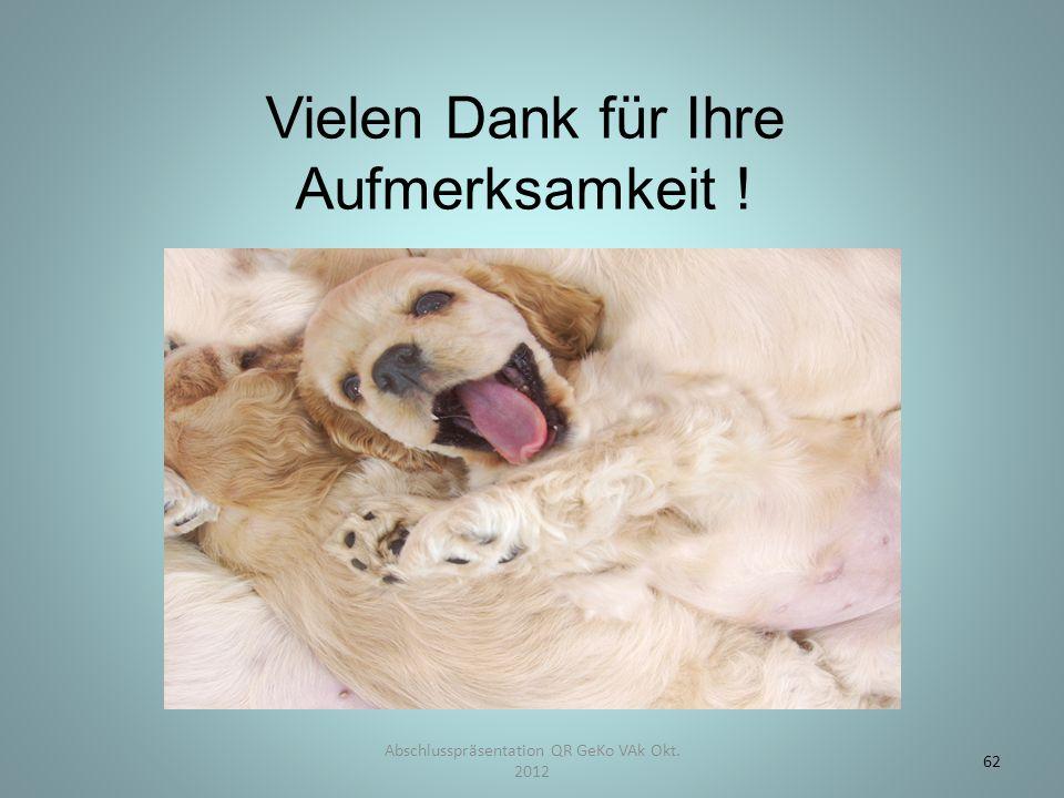 Vielen Dank für Ihre Aufmerksamkeit ! Abschlusspräsentation QR GeKo VAk Okt. 2012 62