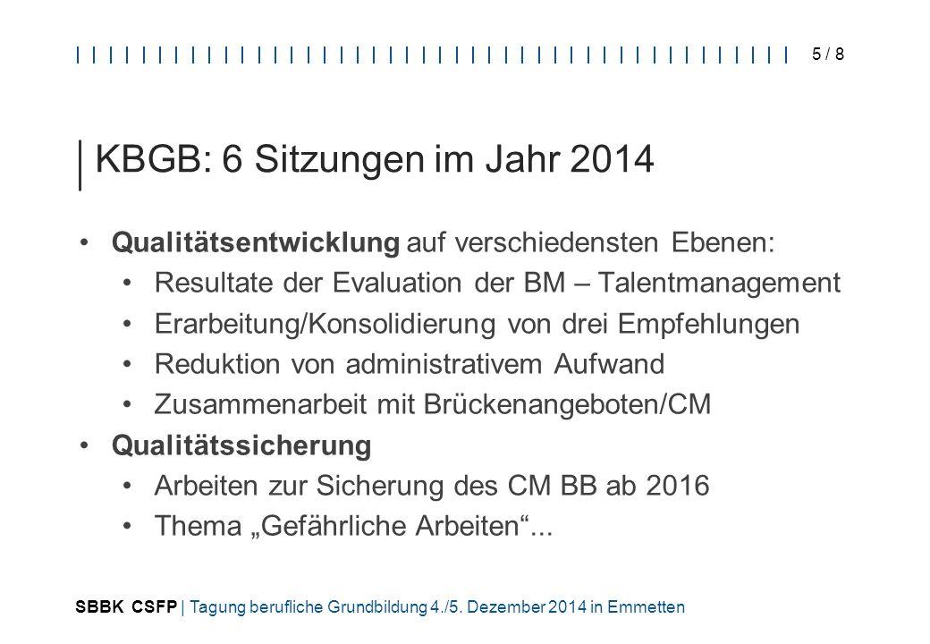 SBBK CSFP | Tagung berufliche Grundbildung 4./5. Dezember 2014 in Emmetten 5 / 8 KBGB: 6 Sitzungen im Jahr 2014 Qualitätsentwicklung auf verschiedenst