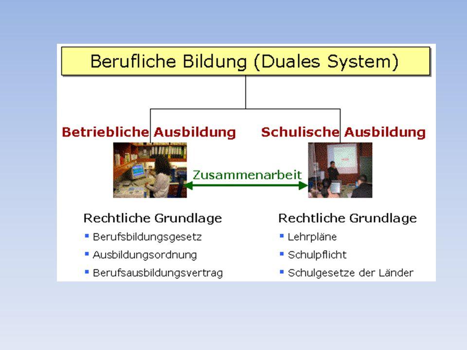 Ausbildungsordnung (Ausbildungsrahmenplan )