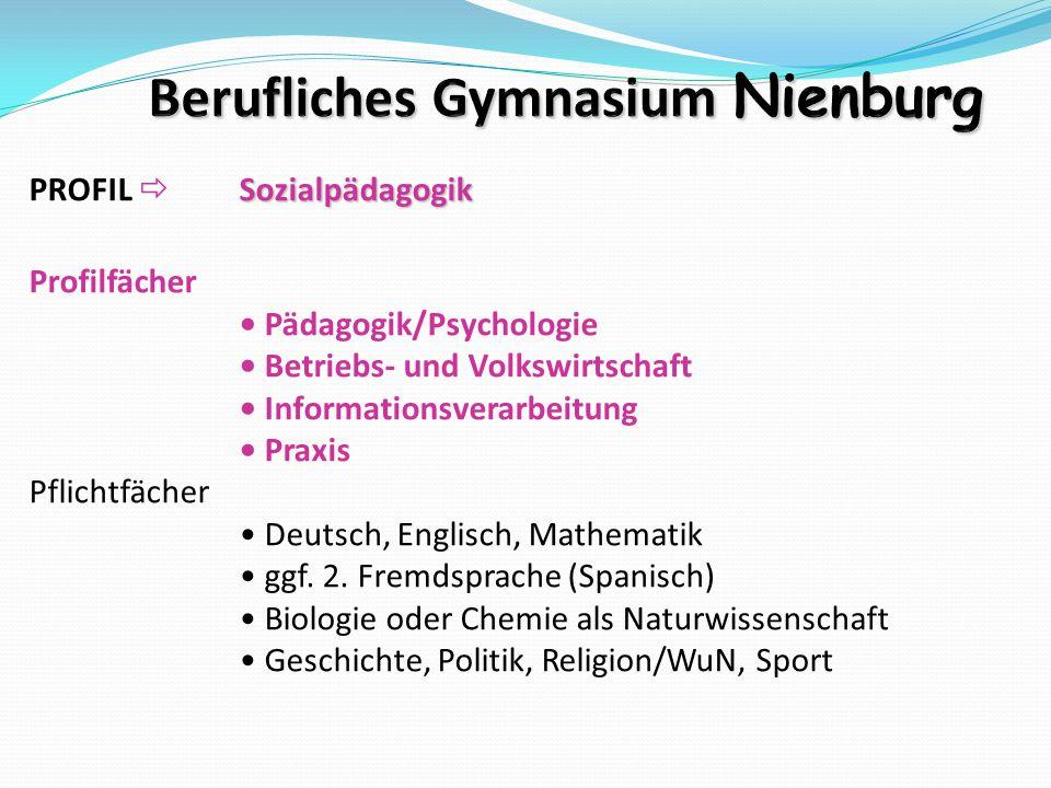 Sozialpädagogik PROFIL  Sozialpädagogik Profilfächer Pädagogik/Psychologie Betriebs- und Volkswirtschaft Informationsverarbeitung Praxis Pflichtfäche