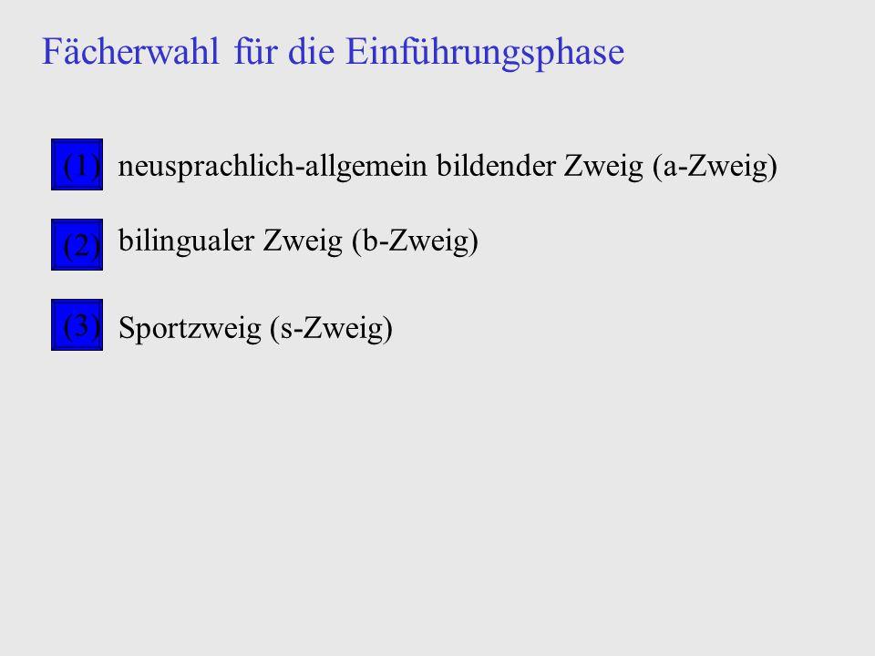 Zusatzinformationen zu einzelnen Fächern Informatikper Kopie (nach dem Vortrag erhältlich bei Oberstufenleitung) Darstell.