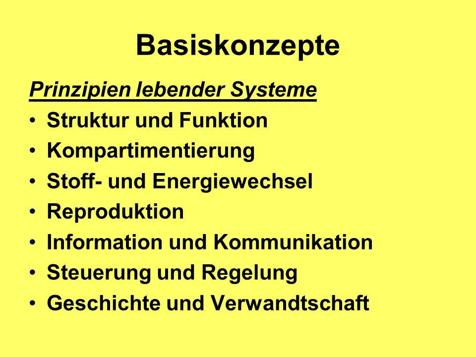 Prinzipien lebender Systeme Struktur und Funktion Kompartimentierung Stoff- und Energiewechsel Reproduktion Information und Kommunikation Steuerung und Regelung Geschichte und Verwandtschaft Basiskonzepte