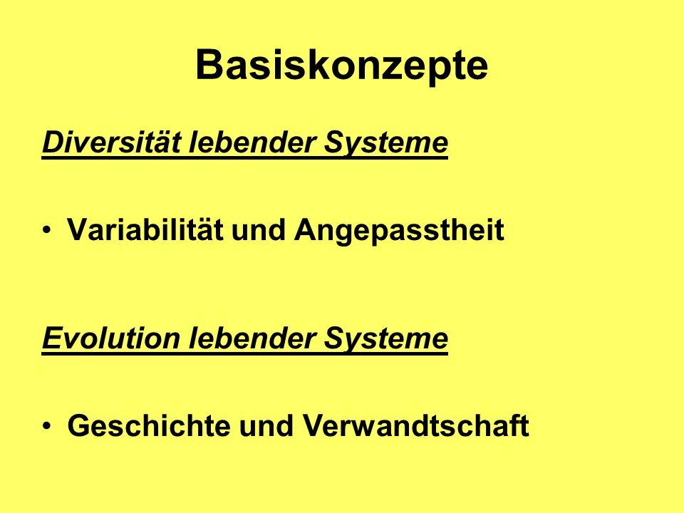 Basiskonzepte Diversität lebender Systeme Variabilität und Angepasstheit Evolution lebender Systeme Geschichte und Verwandtschaft