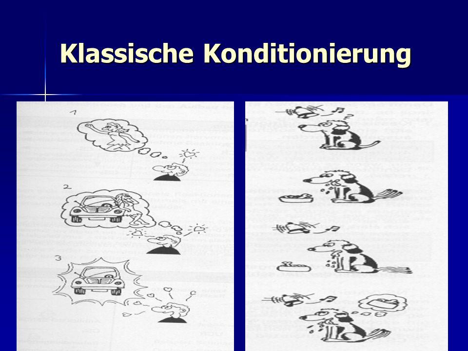 Die Inhalte in 11/2  Lerntheorien (Warum uns bei dem Gedanken an Eiscreme das Wasser im Munde zusammen läuft) im Munde zusammen läuft)  Wahrnehmung und Gedächtnis  Lernen in Gruppen (Gruppendynamik)